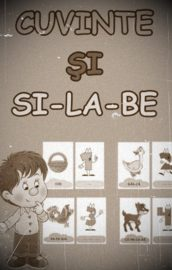 Despărțirea in silabe (1)