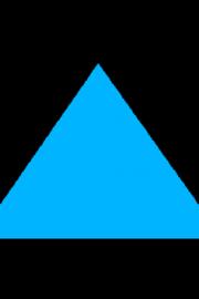 Linii importante in triunghi – clasa a VI-a