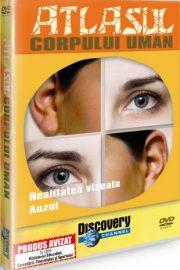 Test biologie-Corpul uman (2)
